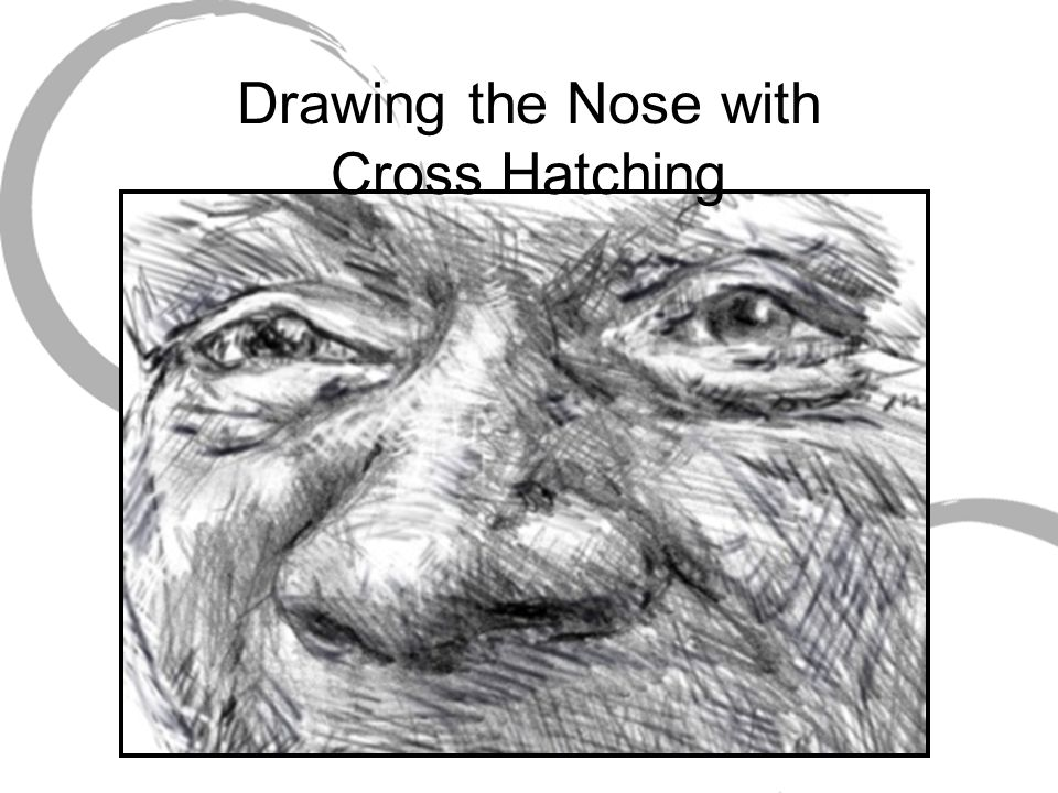 Drawing the Nose with Cross Hatching