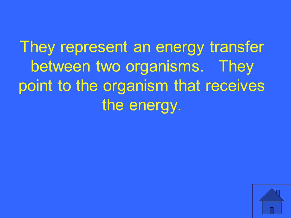 They represent an energy transfer between two organisms