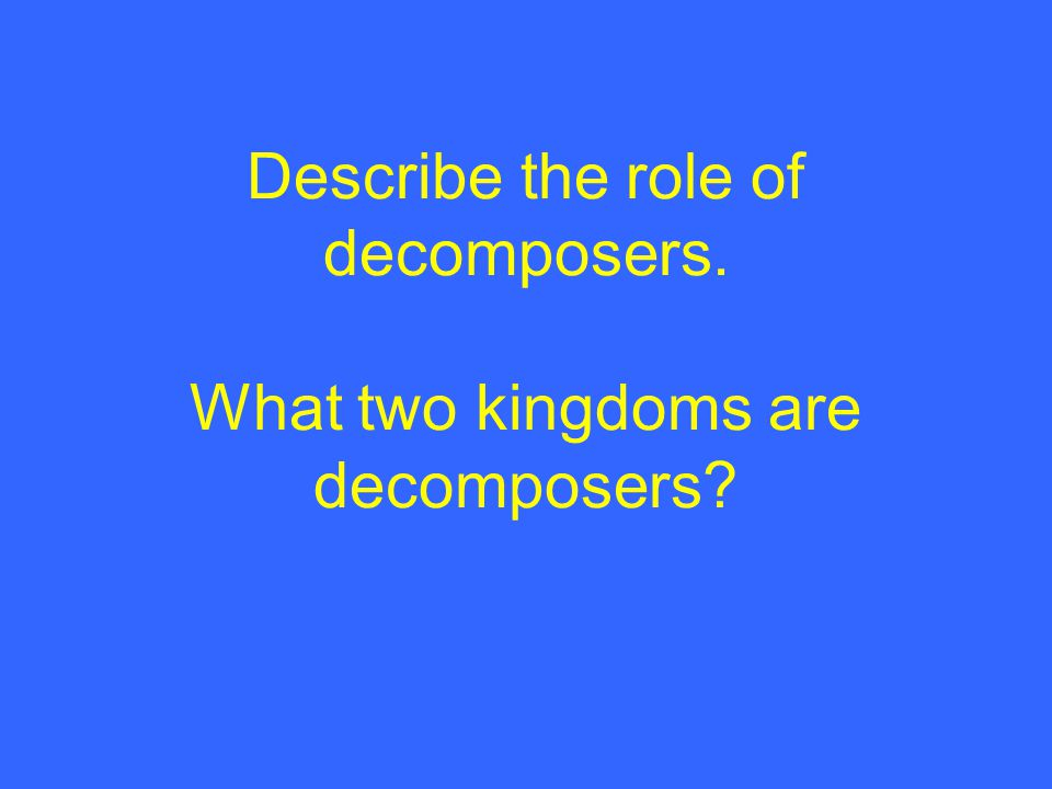 Describe the role of decomposers. What two kingdoms are decomposers