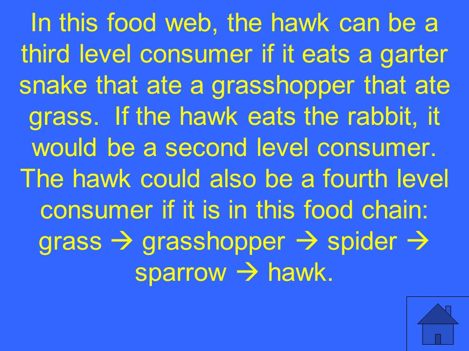 In this food web, the hawk can be a third level consumer if it eats a garter snake that ate a grasshopper that ate grass.