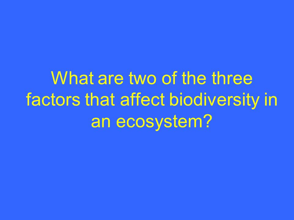 What are two of the three factors that affect biodiversity in an ecosystem