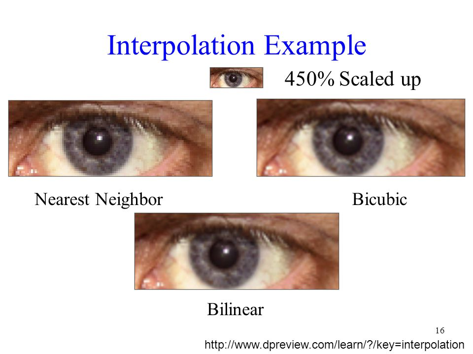 Interpolation Example