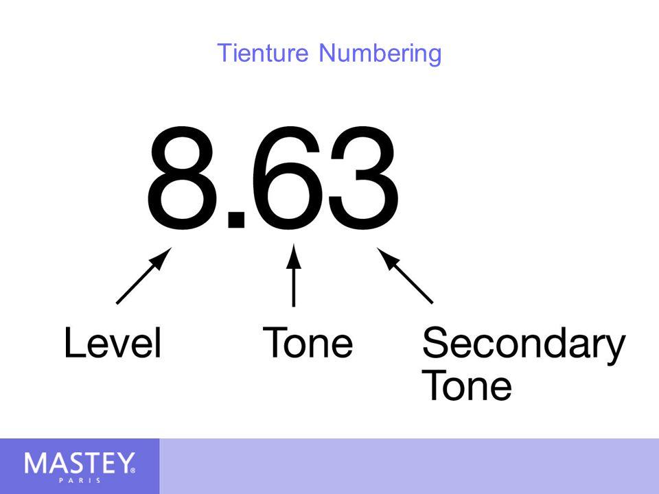 Tienture Numbering