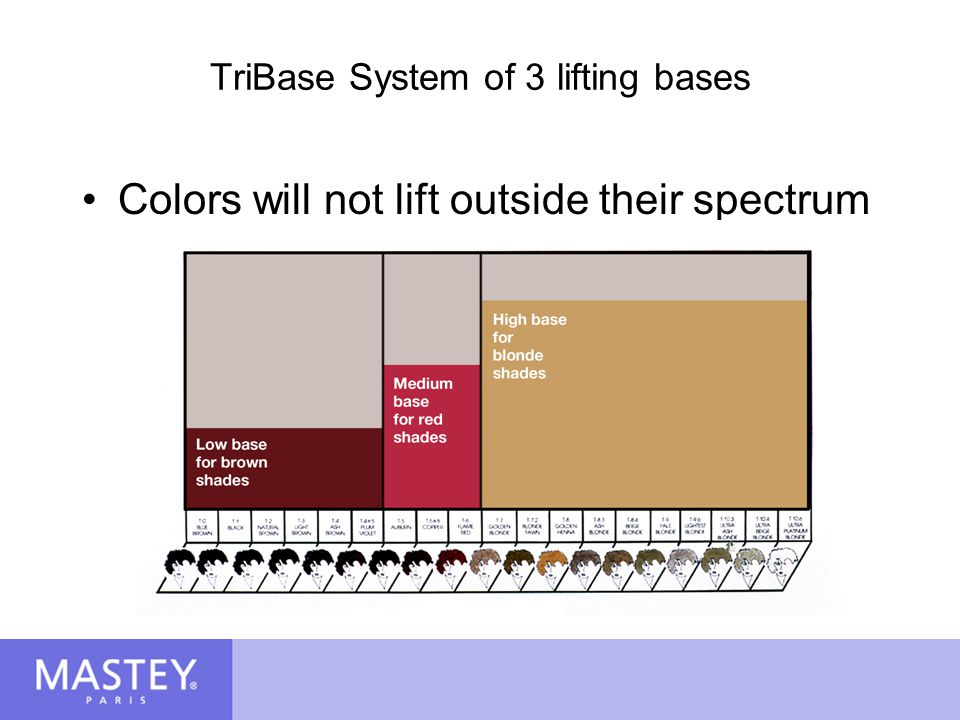 TriBase System of 3 lifting bases
