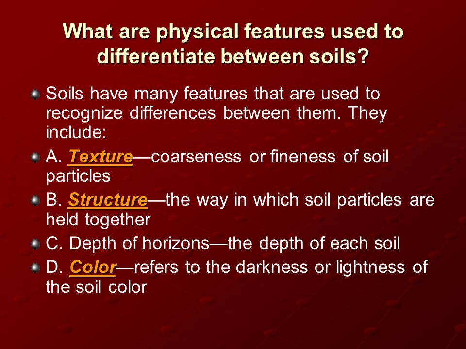 What are physical features used to differentiate between soils