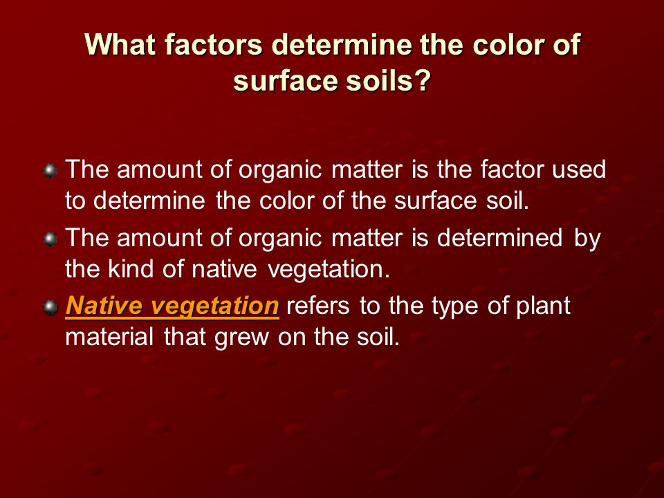 What factors determine the color of surface soils