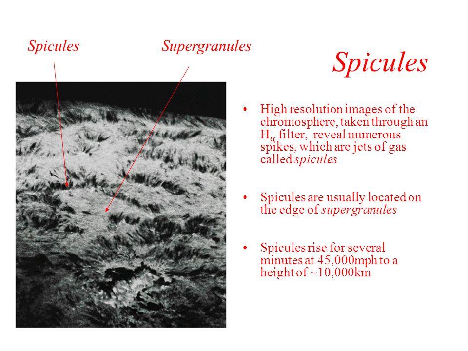 Spicules Spicules Supergranules