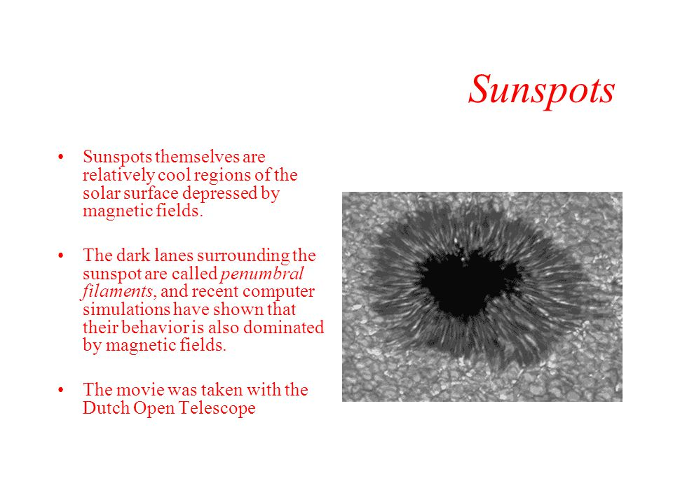 Sunspots Sunspots themselves are relatively cool regions of the solar surface depressed by magnetic fields.