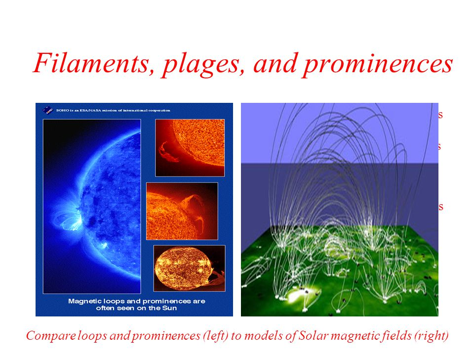 Filaments, plages, and prominences