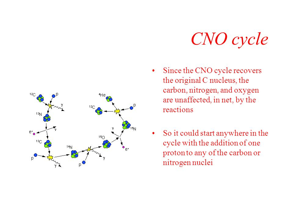 CNO cycle Since the CNO cycle recovers the original C nucleus, the carbon, nitrogen, and oxygen are unaffected, in net, by the reactions.