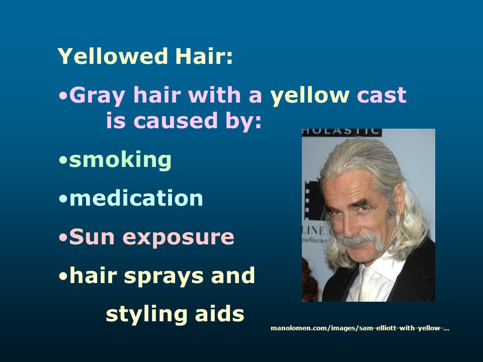 Gray hair with a yellow cast is caused by: