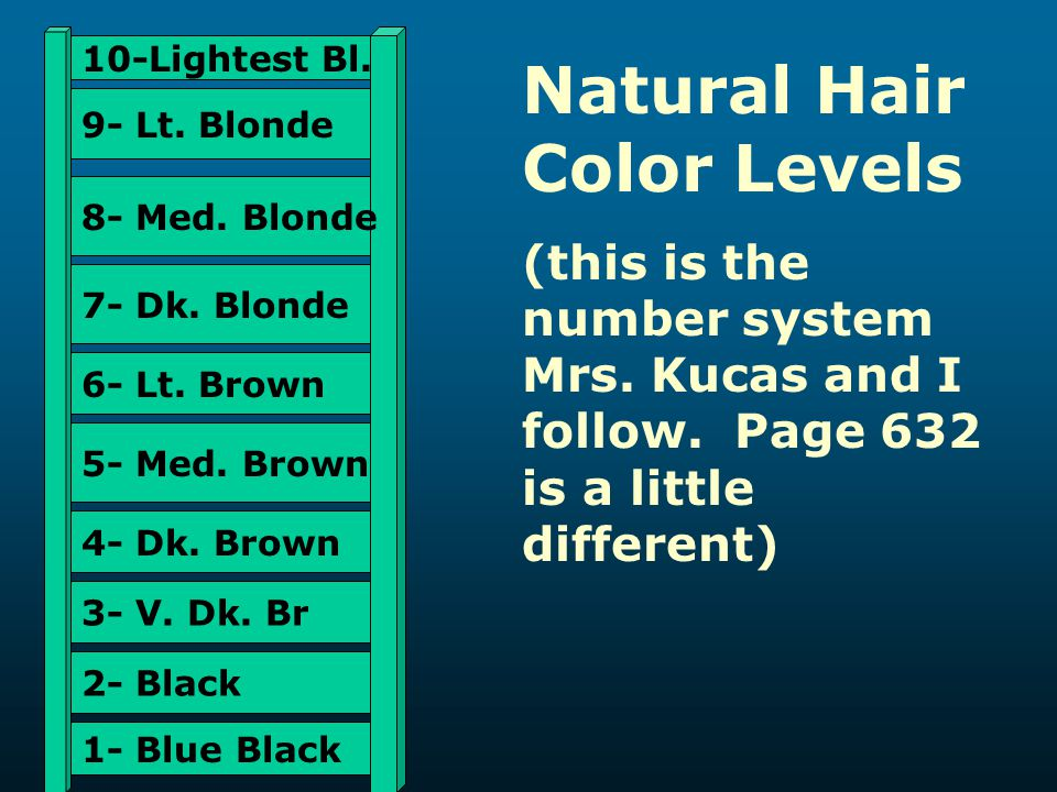 Natural Hair Color Levels