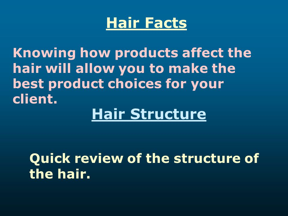 Hair Facts Hair Structure
