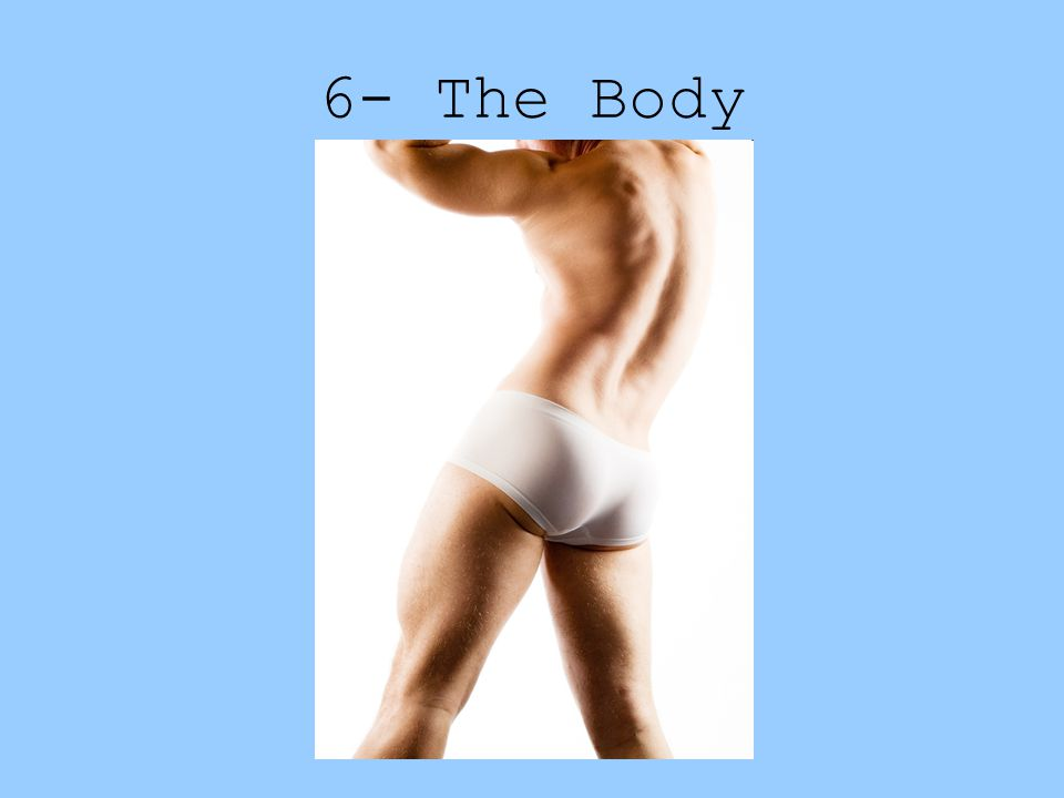 6- The Body