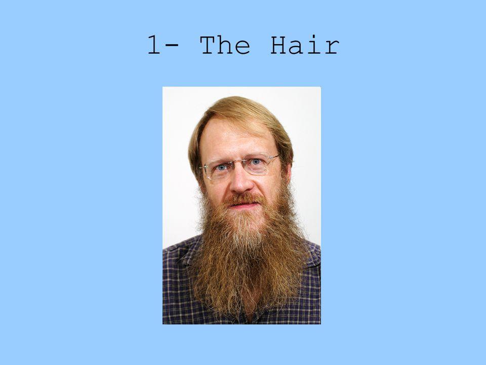 1- The Hair