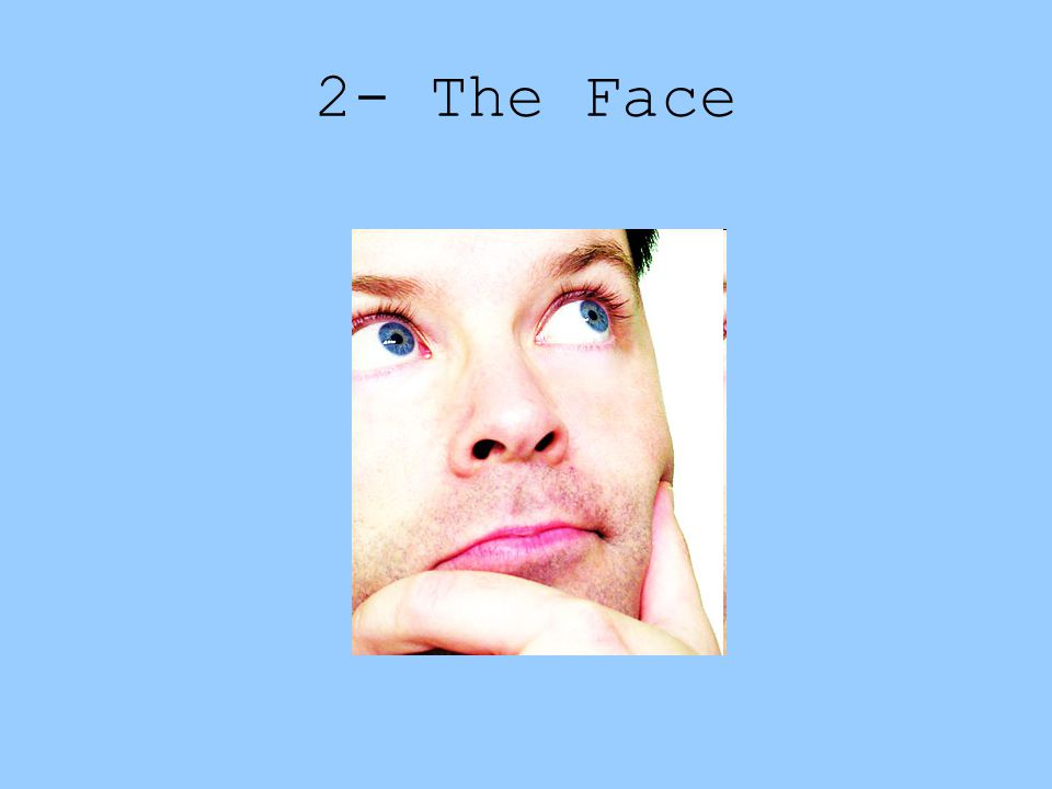 2- The Face