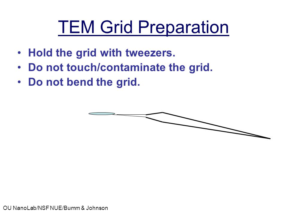 TEM Grid Preparation Hold the grid with tweezers.