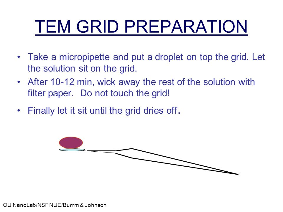 TEM GRID PREPARATION Take a micropipette and put a droplet on top the grid. Let the solution sit on the grid.