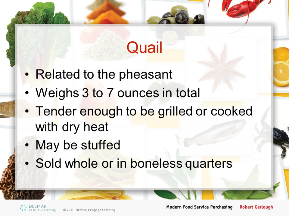 Quail Related to the pheasant Weighs 3 to 7 ounces in total