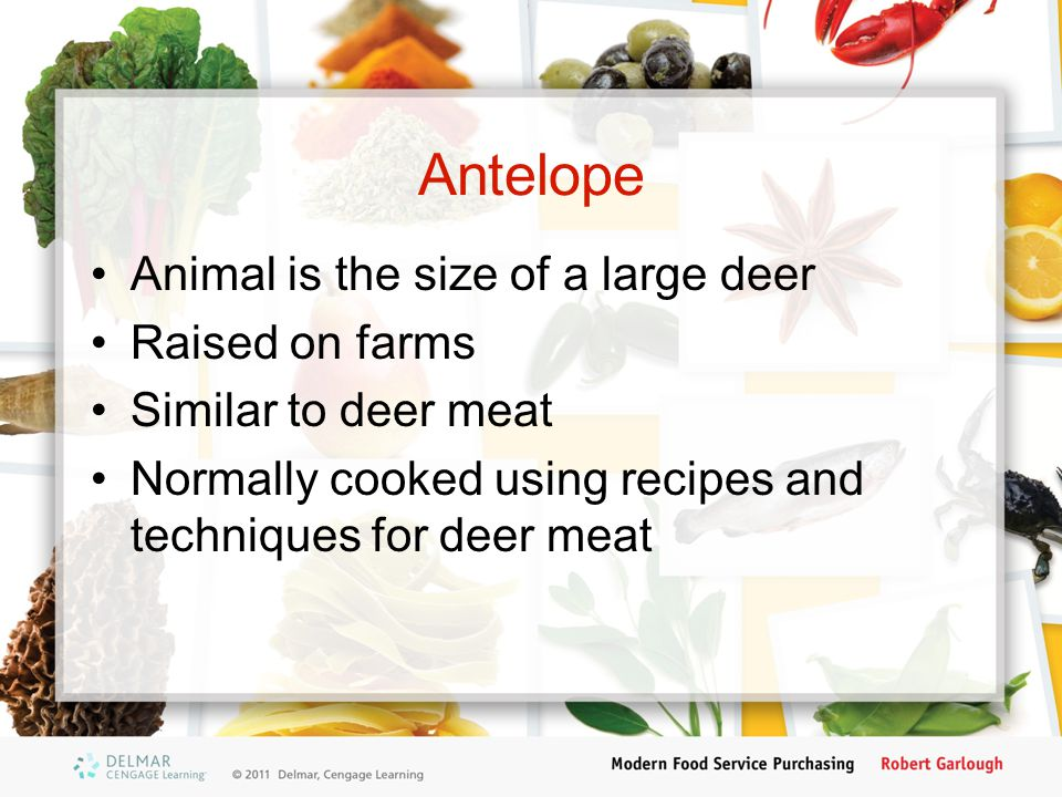Antelope Animal is the size of a large deer Raised on farms