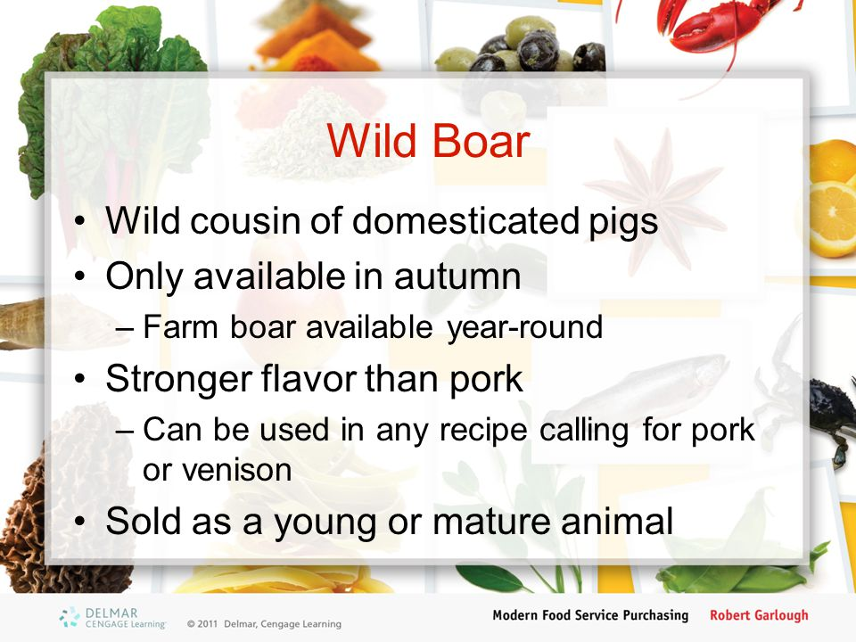Wild Boar Wild cousin of domesticated pigs Only available in autumn