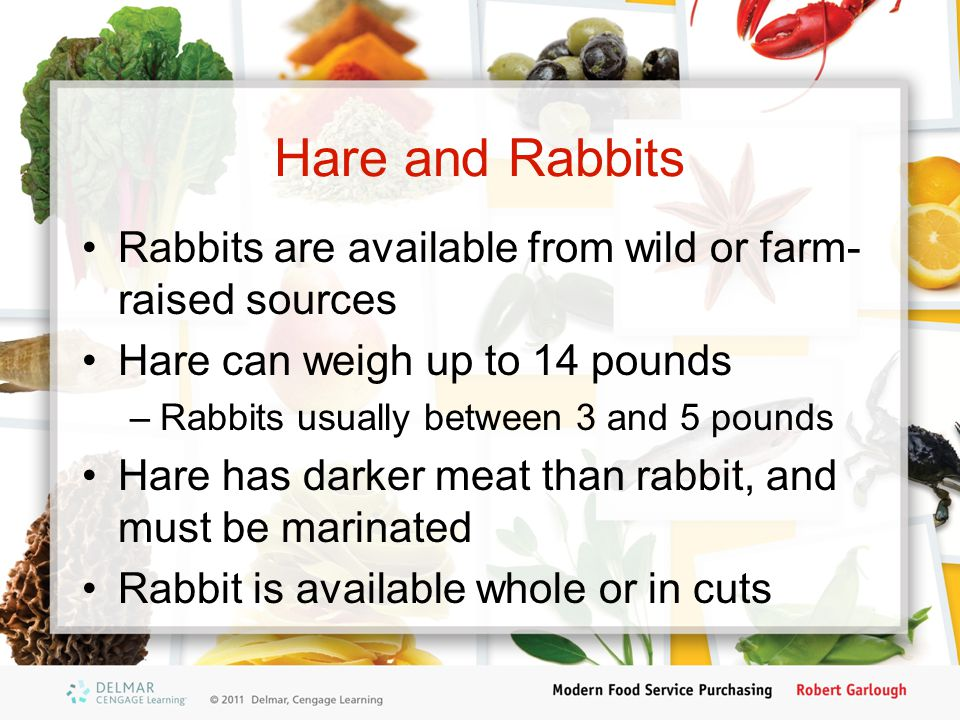 Hare and Rabbits Rabbits are available from wild or farm-raised sources. Hare can weigh up to 14 pounds.