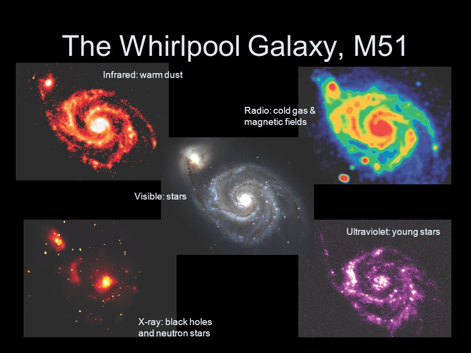The Whirlpool Galaxy, M51 Infrared: warm dust