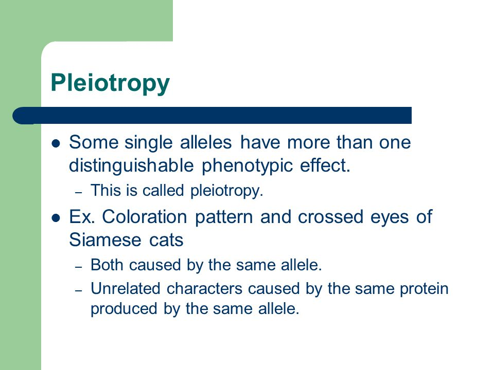 Pleiotropy Some single alleles have more than one distinguishable phenotypic effect. This is called pleiotropy.