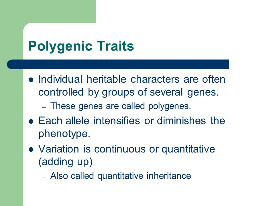 Polygenic Traits Individual heritable characters are often controlled by groups of several genes. These genes are called polygenes.