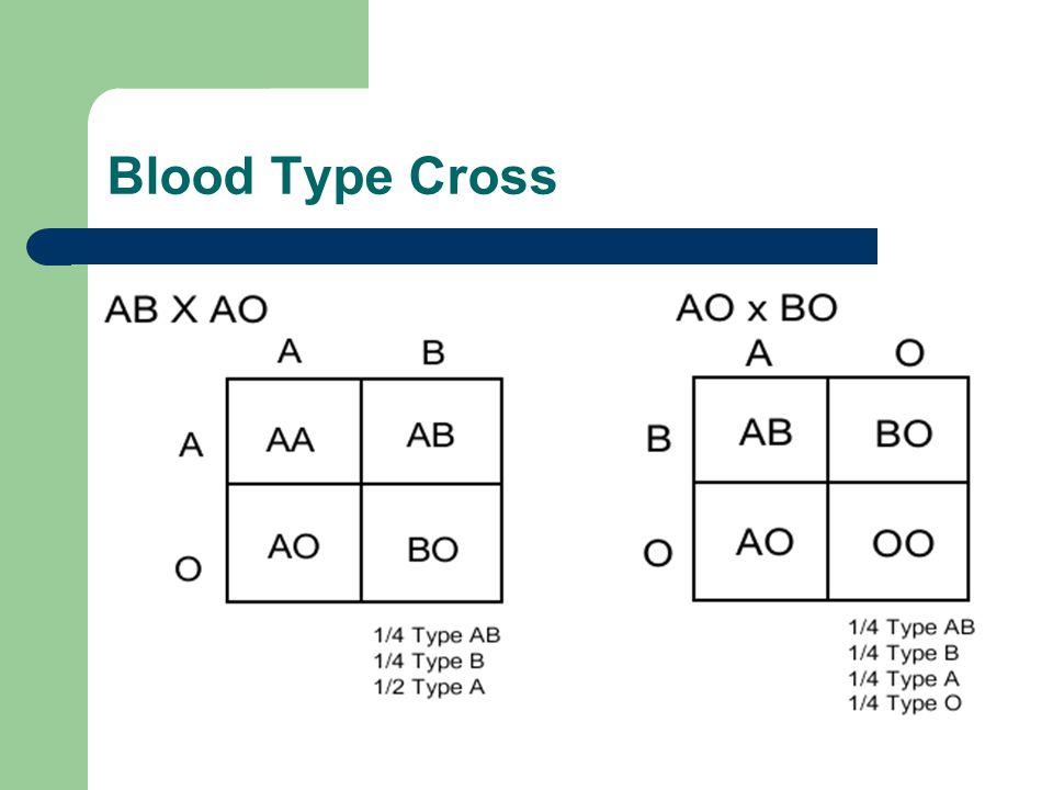 Blood Type Cross