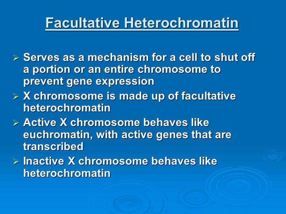 Facultative Heterochromatin