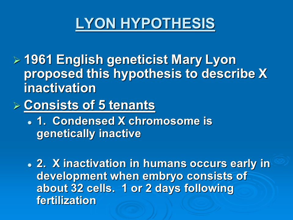 LYON HYPOTHESIS 1961 English geneticist Mary Lyon proposed this hypothesis to describe X inactivation.