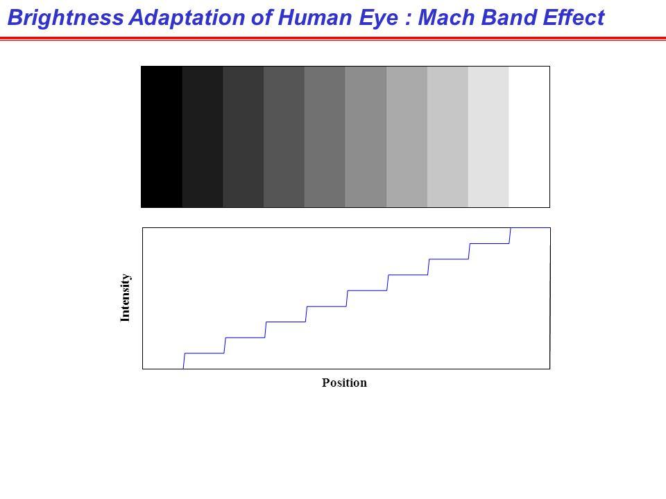 Brightness Adaptation of Human Eye : Mach Band Effect