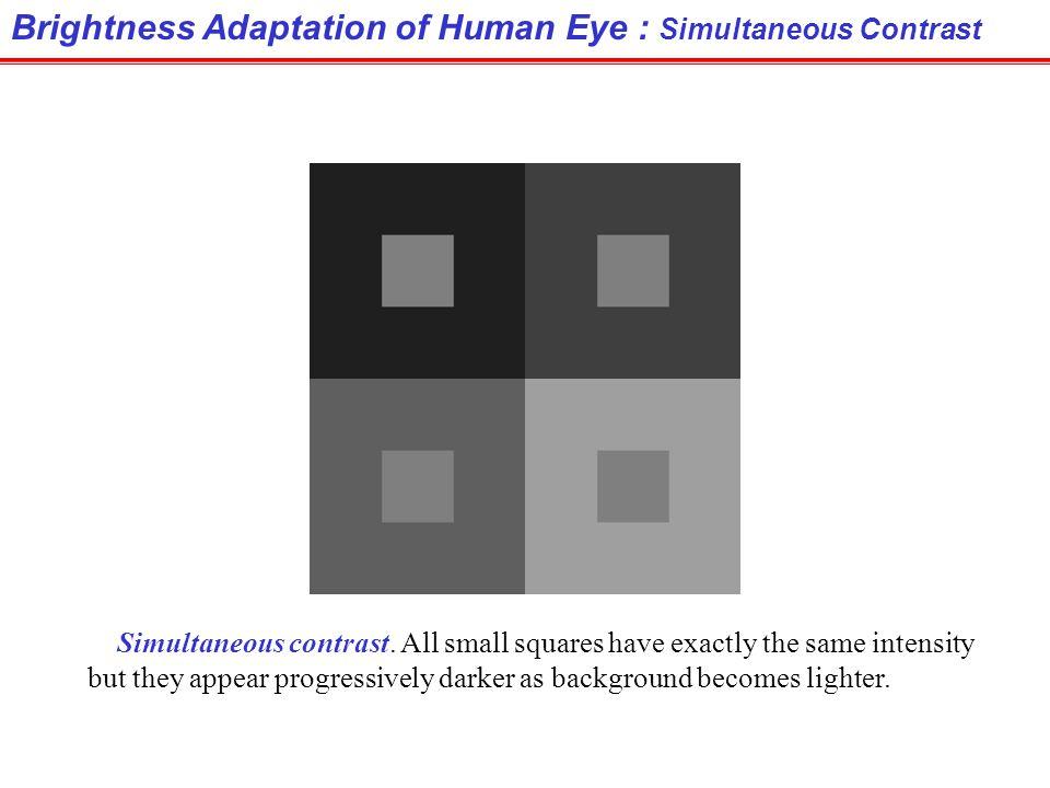 Brightness Adaptation of Human Eye : Simultaneous Contrast