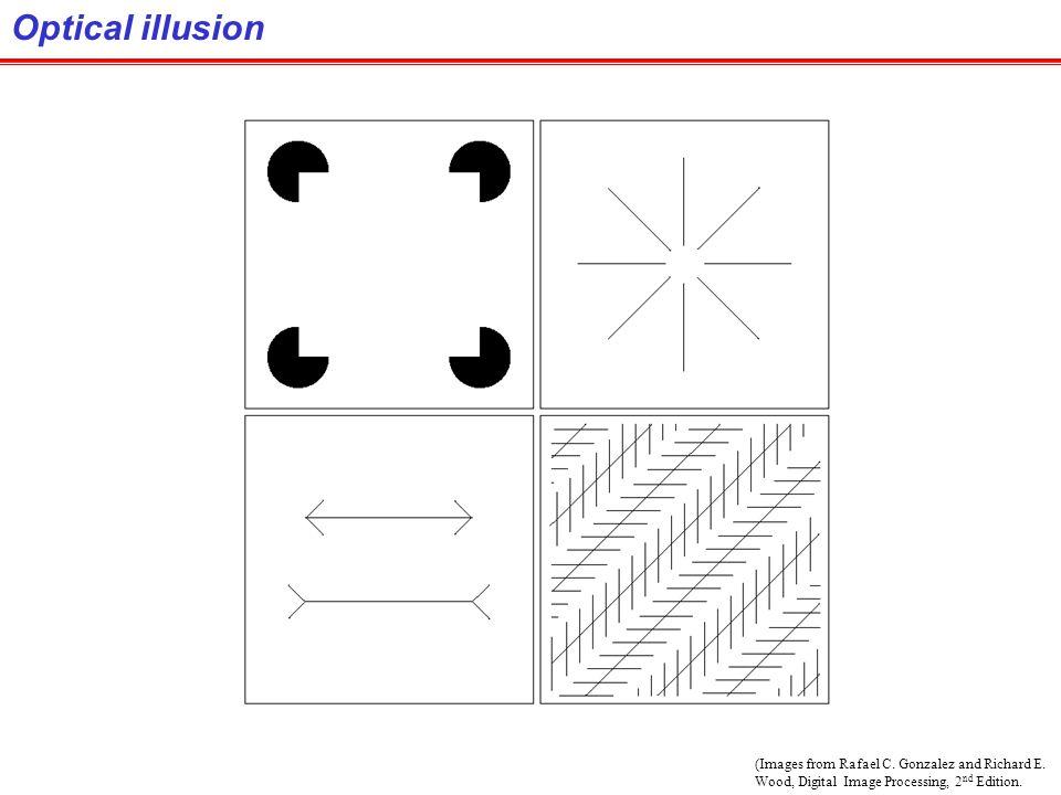 Optical illusion (Images from Rafael C. Gonzalez and Richard E.