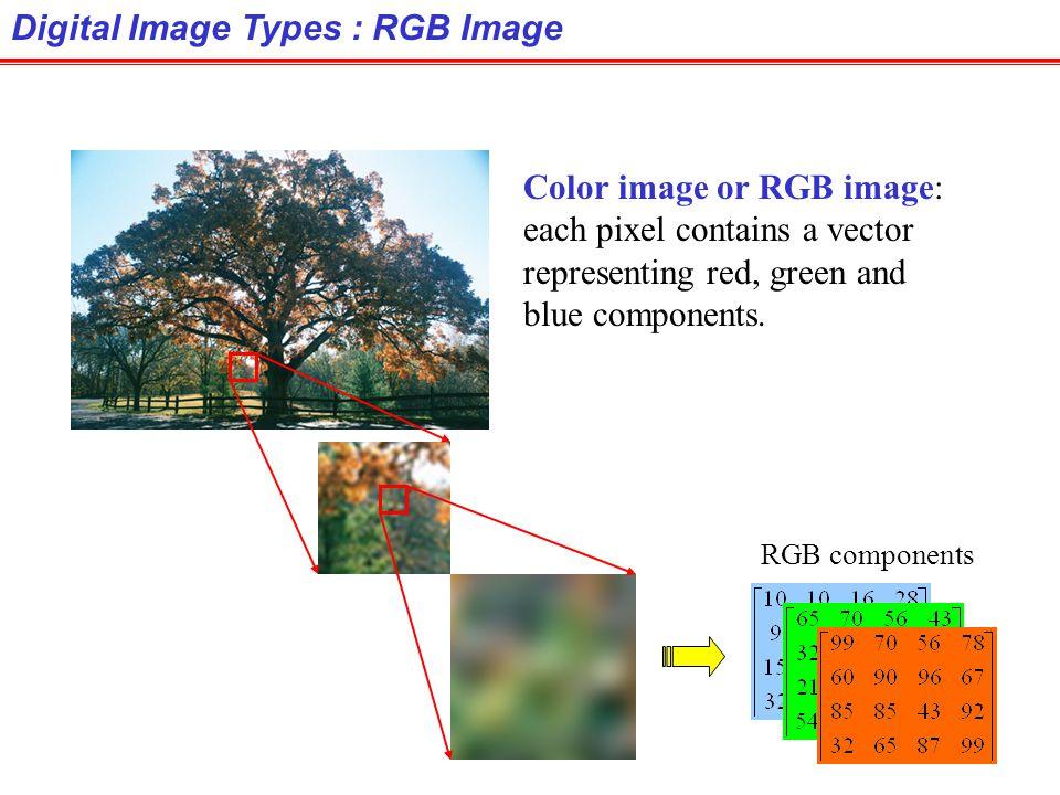 Digital Image Types : RGB Image