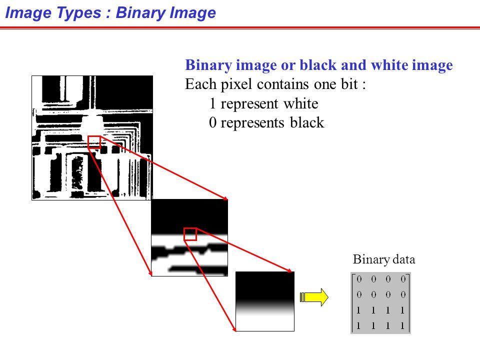 Image Types : Binary Image