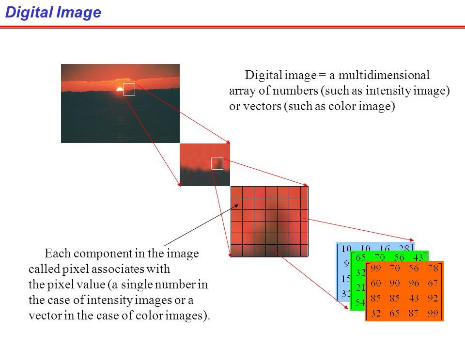 Digital Image Digital image = a multidimensional