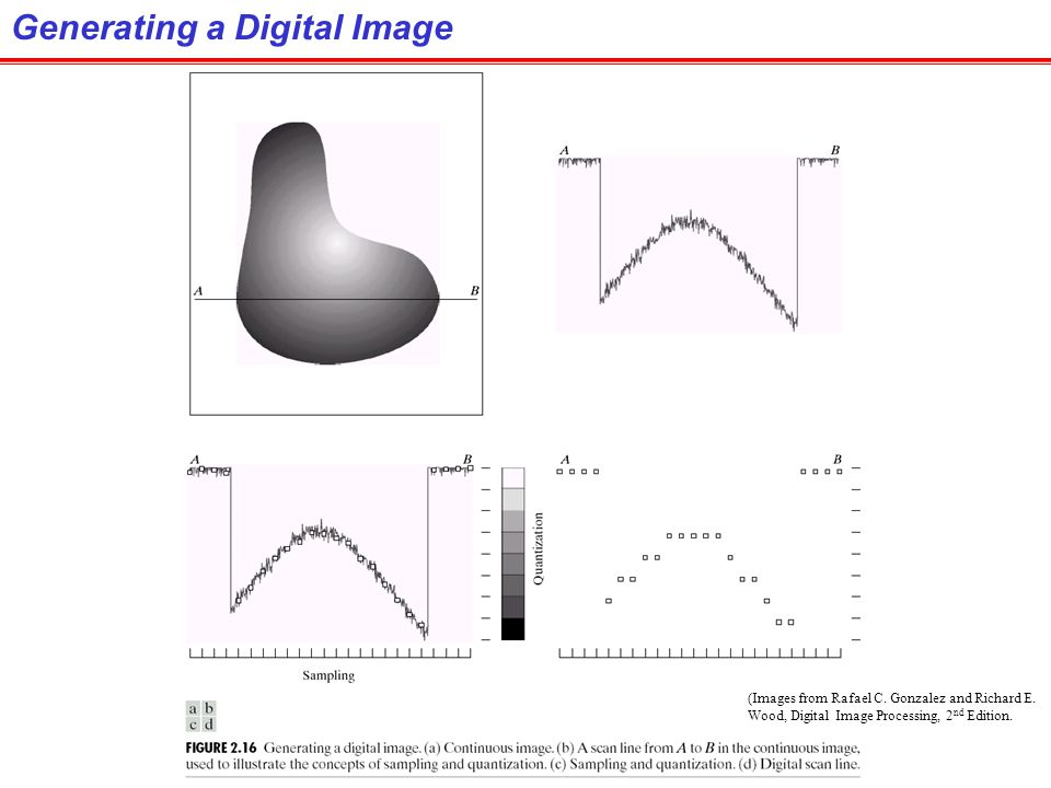 Generating a Digital Image