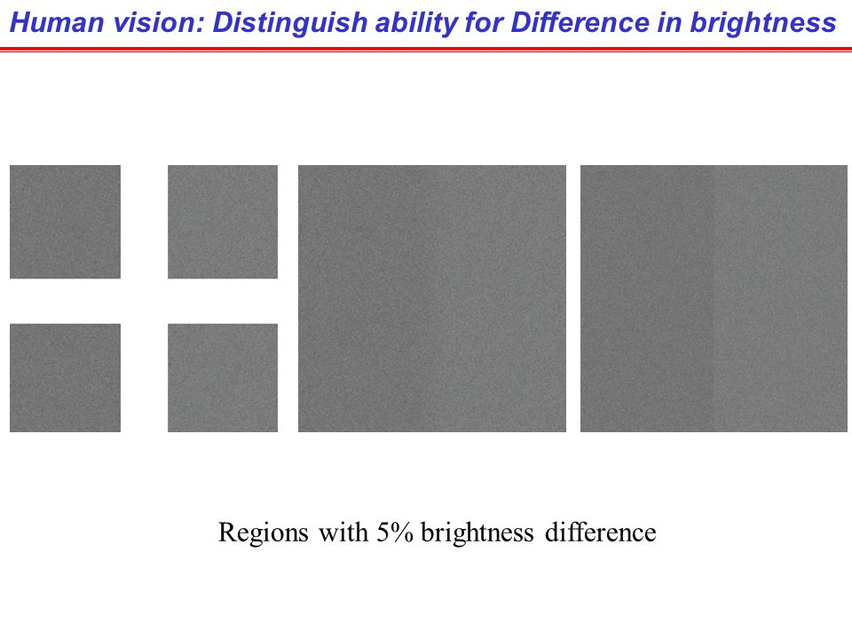 Human vision: Distinguish ability for Difference in brightness