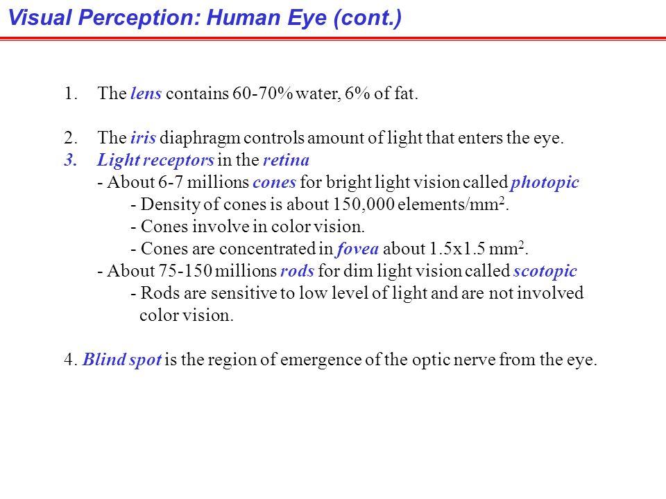 Visual Perception: Human Eye (cont.)