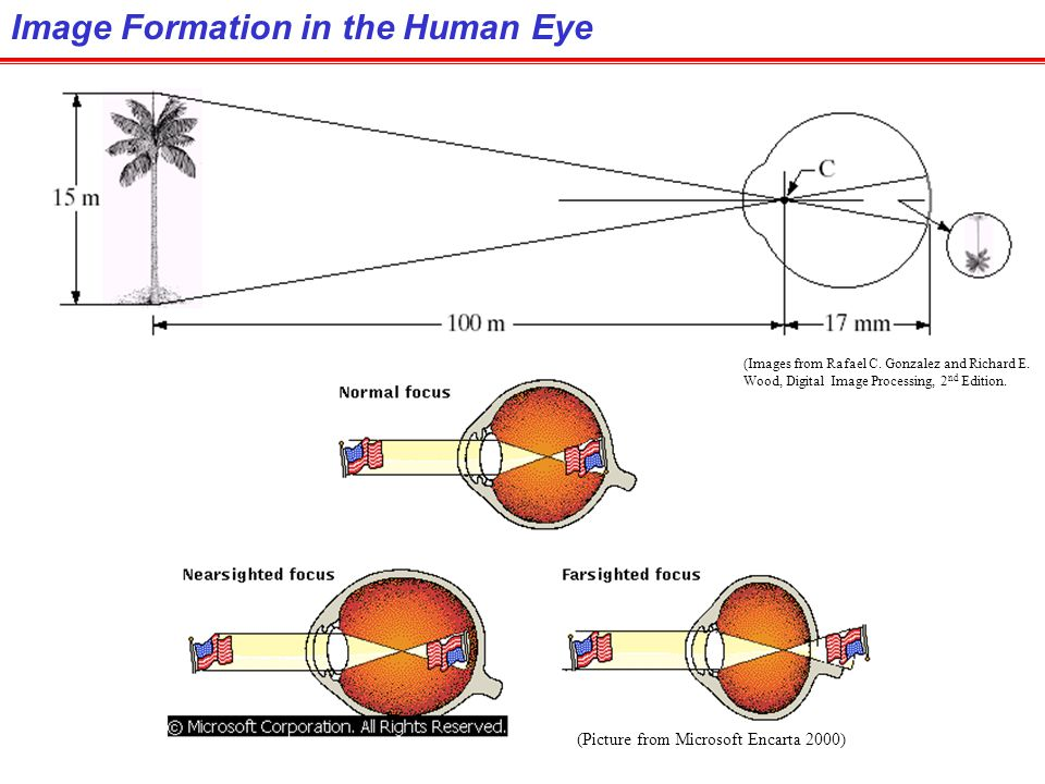 Image Formation in the Human Eye
