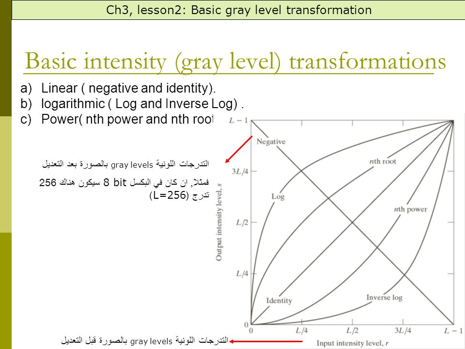Basic intensity (gray level) transformations