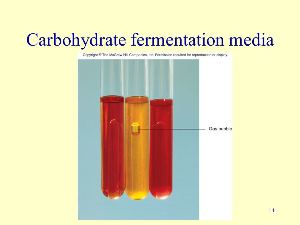 Carbohydrate fermentation media