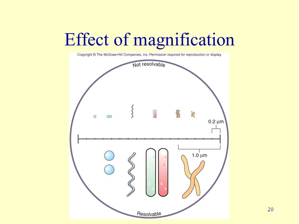 Effect of magnification
