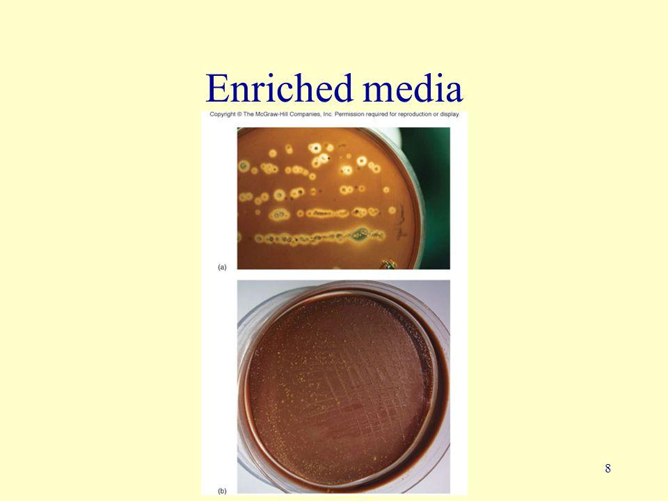 Enriched media
