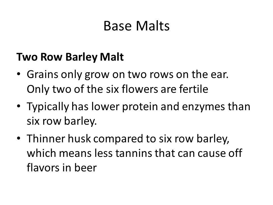Base Malts Two Row Barley Malt