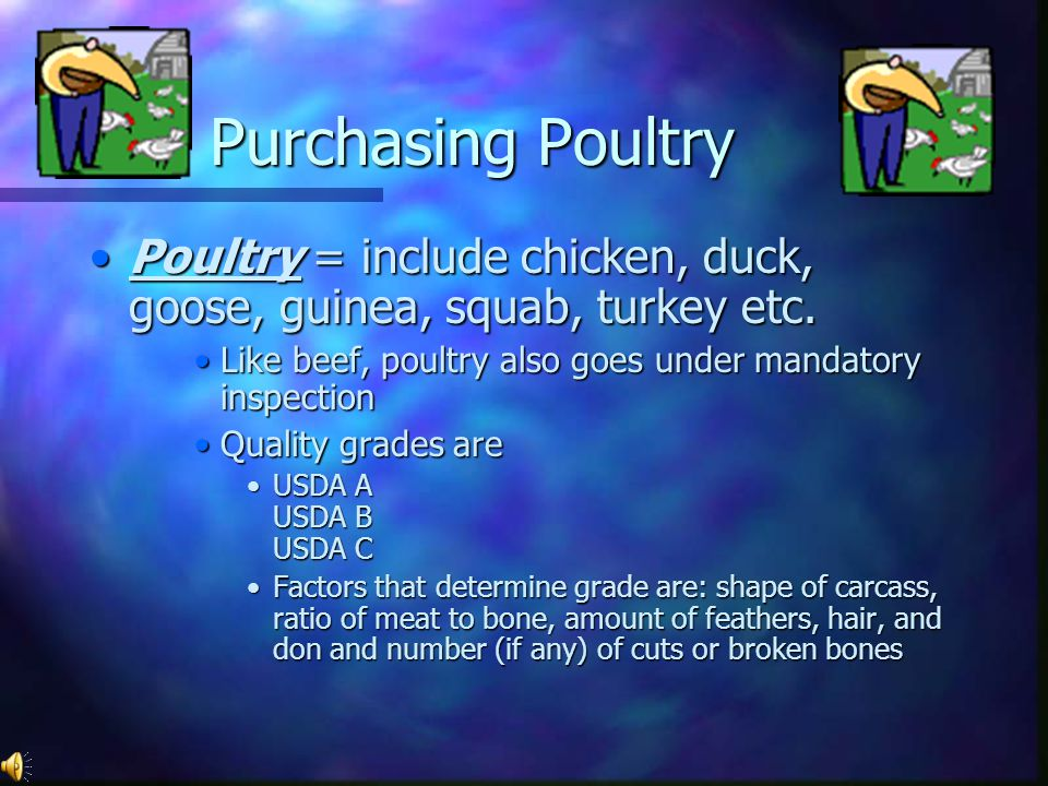 Purchasing Poultry Poultry = include chicken, duck, goose, guinea, squab, turkey etc. Like beef, poultry also goes under mandatory inspection.