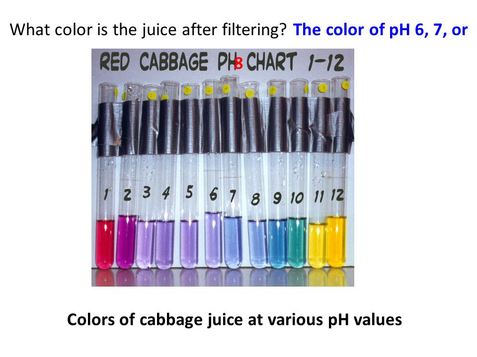 Colors of cabbage juice at various pH values