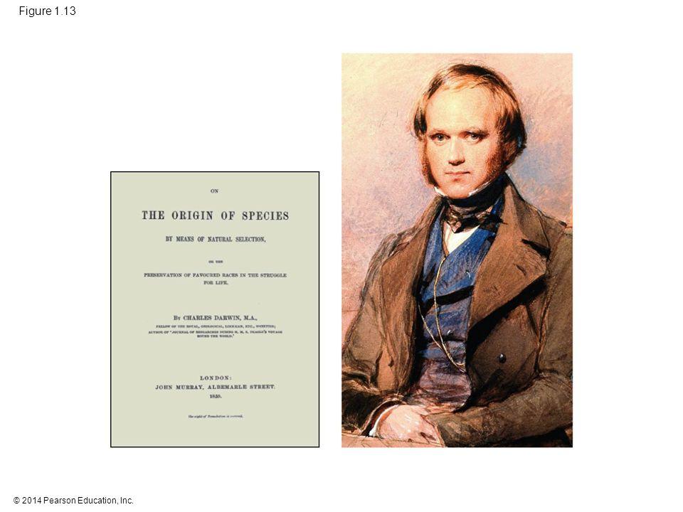 Figure 1.13 Figure 1.13 Charles Darwin in 1840 57